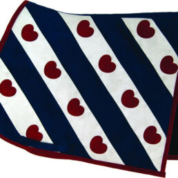 Zadeldek-Luxe-Friese-Vlag