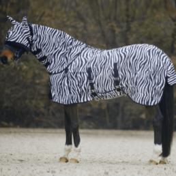 vlieg-zebra
